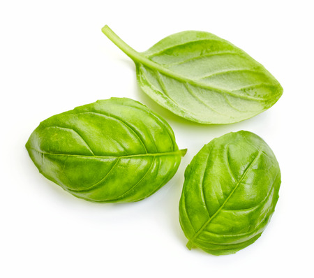 epices: feuilles de basilic frais isol� sur fond blanc Banque d'images