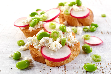 toasted bread with radish and cottage cheese on white wooden table