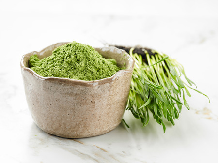 wheat grass: bowl of green wheat grass powder