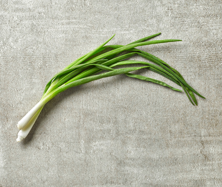 green onion: green spring onions on gray stone background, top view
