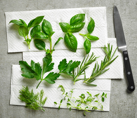 various fresh herbs on paper towel, top view Stock Photo
