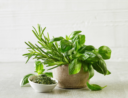 seasoning: fresh and dried herbs on gray kitchen table Stock Photo