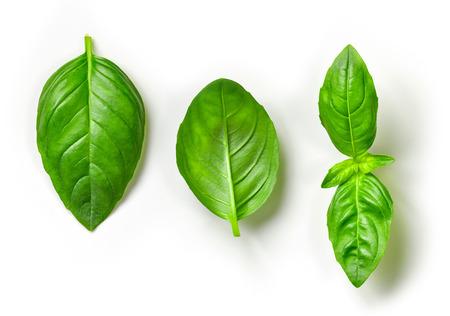 緑のバジルの葉に孤立した白い背景、トップ ビュー