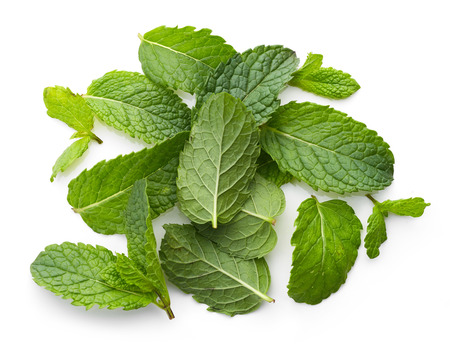 fresh green mint leaves isolated on white background, top view Stock Photo