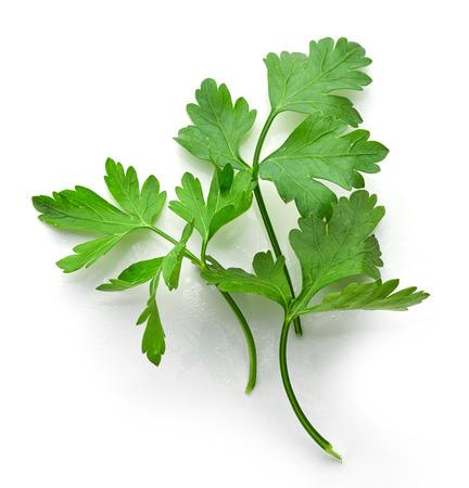 新鮮なパセリの緑葉に孤立した白い背景、トップ ビュー
