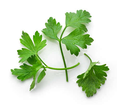 perejil: fresh green parsley leaves isolated on white background, top view