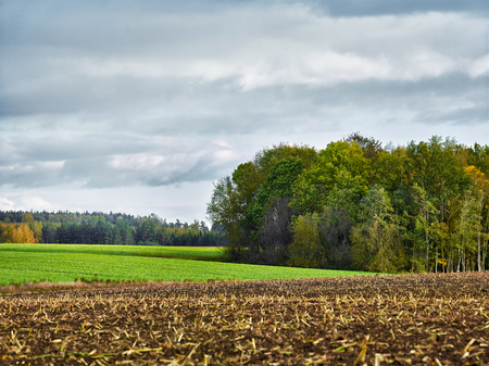 reachable: landscape with fields and clouds, selective focus