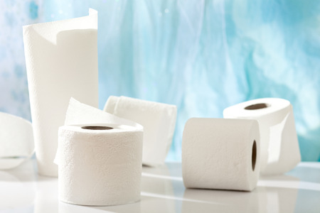 toilet paper and towel rolls