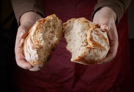 freshly baked bread in bakers hands Zdjęcie Seryjne