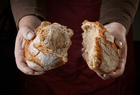 freshly baked bread in bakers hands