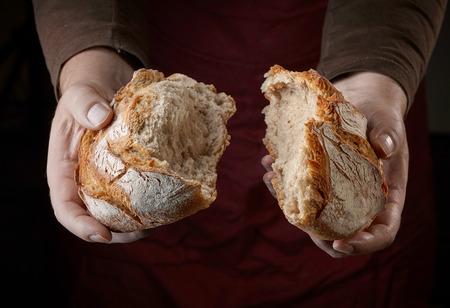freshly baked bread in bakers hands Foto de archivo