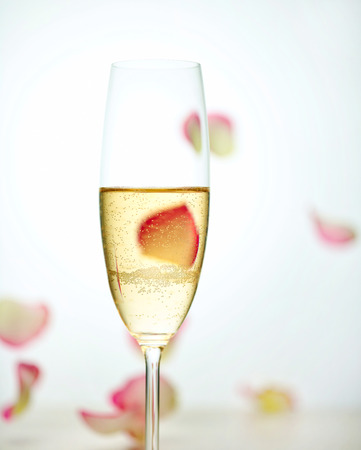 glass of champagne and falling rose petals, selective focus