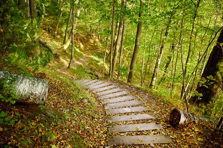 Stairway in a mountain park, Sigulda, Latvia