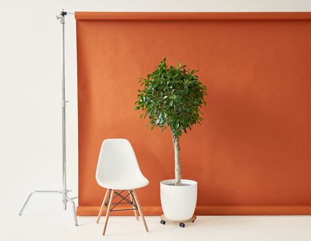 Photography studio equipment. Brown paper backdrop and white chair