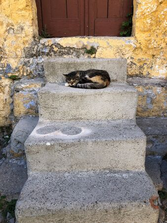 cat sleeping on stairs of historic old town of Rhodes, Rodos, Greece Reklamní fotografie