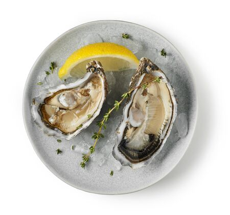 plate of fresh raw oysters isolated on white background, top view