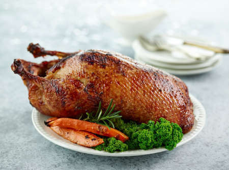 freshly roasted duck roast with vegetables on white plate 免版税图像