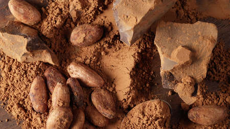 various cocoa product background top view