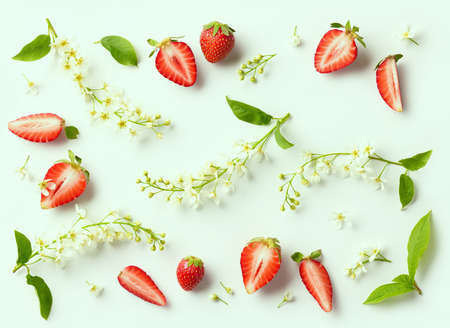 flat lay composition of blooming bird cherry and strawberries on green background, top view