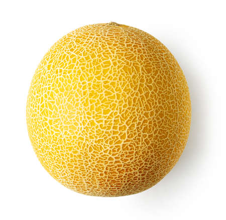 Fresh ripe melon