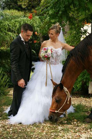 honeymooners: honeymooners and the mare  Stock Photo