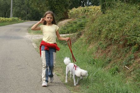 girl, smiling, dog, poodle, walk, leash, friendship, animal campaign photo