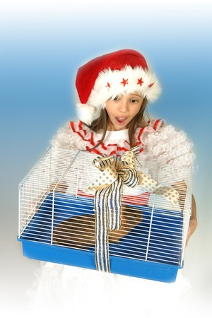 christmas guinea pig: Child, girl, smile, happiness, blue, animal, guinea pig, guinea pig, cage, winter, cold December, hat, Christmas, celebration, festive, eyes, expressions, blue color, gifts, offer, receive, Stock Photo