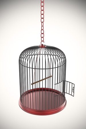 break out of prison: Open bird cage, 3d rendered image