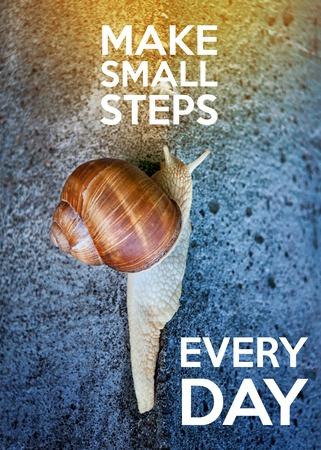 inspiración: Cita inspirada con las palabras hacen pequeños pasos cada día. Caracol grande que se arrastra en una pared de piedra