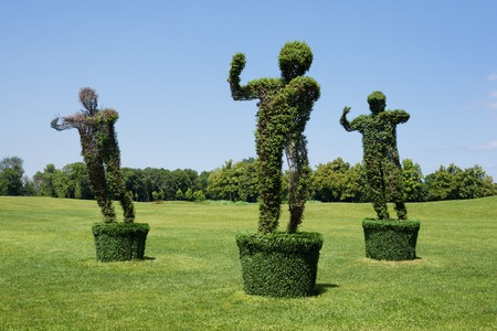 topiary: Topiary Garden Sculpture made of grass - man figure. Eco and nature concept Stock Photo