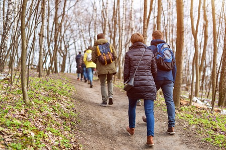 walking paths: Group of friends walking with backpacks in spring forest from back. Backpackers hiking in the woods. Adventure, travel, tourism, active rest, hike and people friendship concept. Stock Photo