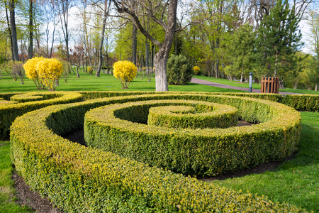 Garden with topiary landscape. Landscaping in the park Stock Photo
