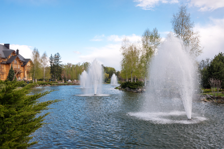 back yard pond: Ornamental gardens with lake and fountain at summer Stock Photo