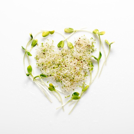 Micro greens arranged in shape of heart on white background. Sunflower sprouts, lucerne, microgreens. Flat lay. Nature and healthy food, diet, eco concept. Stock Photo
