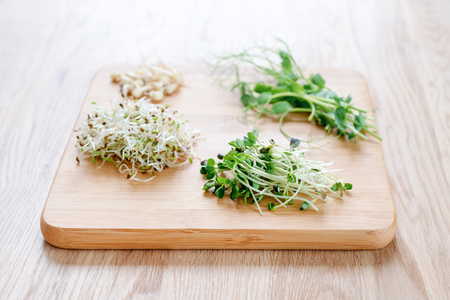 Different types of micro greens on wooden background. Healthy eating concept of fresh garden produce organically grown as a symbol of health and vitamins from nature. Microgreens ready for cooking. Stock Photo