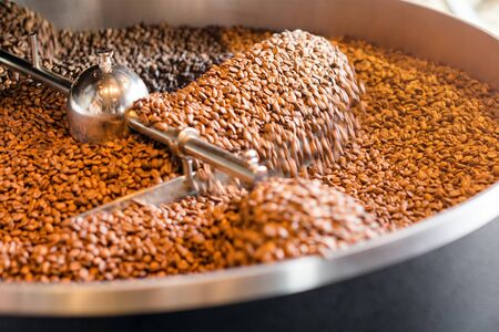 Freshly roasted coffee beans from a large roaster in the cooling cylinder. Motion blur on the beans, selective focus