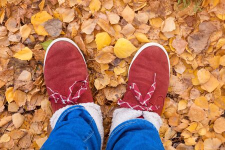Feet in warm shoes walking on fall leaves in park with autumn season nature on background. Lifestyle fashion trendy style. Autumn season in hipster style shoes Reklamní fotografie