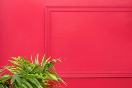 Red wall with frame and green plants. Copy space