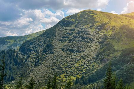 Summer landscape in the Carpathian mountains. View from the mountain peak Hoverla. Ukrainian mountain Carpathian Hoverla, view from the top