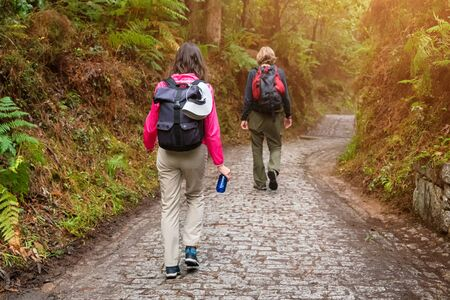 Group of friends walking with backpacks in forest from back. Backpackers hiking in the woods. Adventure, travel, tourism, active rest, hike and people friendship concept Standard-Bild