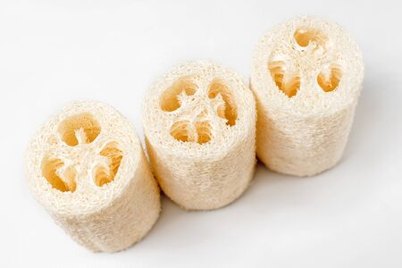 Luffa Loofah. Vegetable sponge extracted from the Luffa plant on light background. Eco friendly loofahs sponges, zero waste. Sustainable bathroom and lifestyle, plastic-free and eco-friendly concept. Imagens