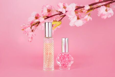 Different transparent perfume bottles with spring blooming tree branch on pink background. Aromatic essence bottles with cherry blossom spring flowers. Perfumery, cosmetics, fragrance collection