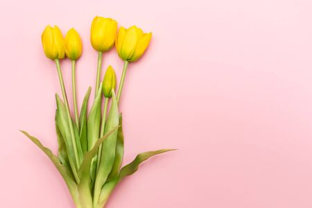 Yellow tulip flowers bouquet on pink background. Flat lay, top view. Minimal floral concept. Spring flowers, floral background.