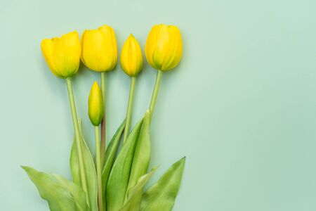 Yellow tulip flowers bouquet on mint background. Flat lay, top view. Minimal floral concept. Spring flowers, floral background with copyspace.