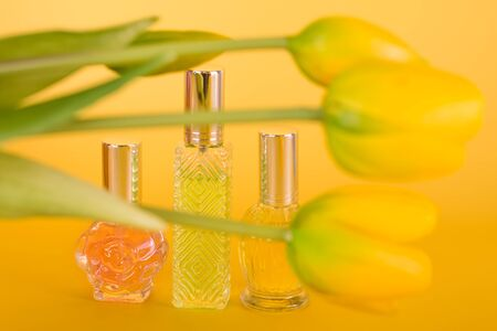 Different transparent perfume bottles with bouquet of tulips on yellow background. Aromatic essence bottles with spring flowers. Perfumery, cosmetics, fragrance collection