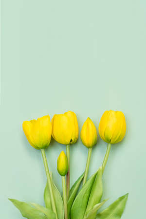 Yellow tulip flowers bouquet on mint background. Flat lay, top view. Minimal floral concept. Spring flowers, floral background with copyspace Stock fotó