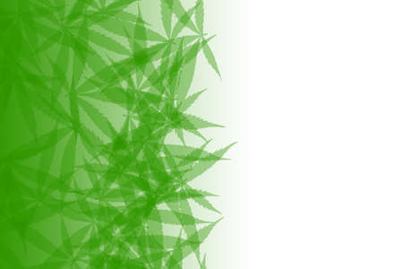 Green cannabis leaves background. Drug marijuana herb leaves shapes with copyspace for text. Legalization of cannabis, marijuana, herbs concept.