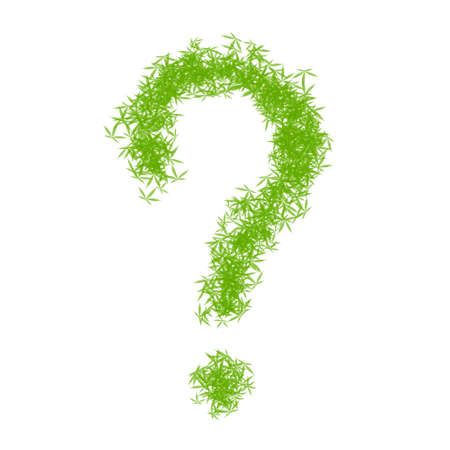 Question mark made from green cannabis leaves on a white background. Drug marijuana herb leaves shapes forming a question sign. Legalization of cannabis, marijuana, herbs concept