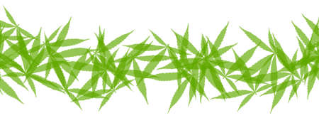 Banner with green cannabis leaves. Garland made from drug marijuana herb leaves.
