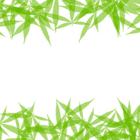 Frame formed with hemp leaves isolated on white background. Green cannabis leaves background. Drug marijuana herb leaves shapes with copyspace for text. Stock fotó